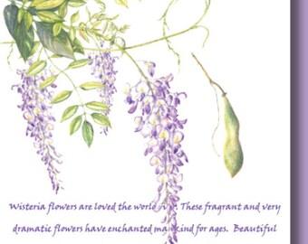 Unique Elegant Fine Art Botanical Greeting Card - Wisteria Purple