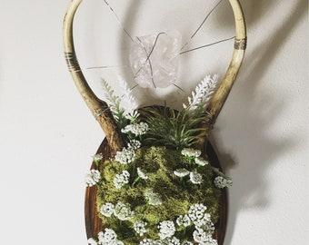Seer (Real Antler Floral Decor)