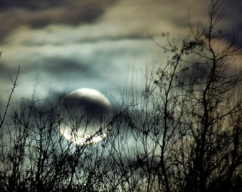 Wolf Moon, full moon photograph, tree silhouette in night sky, silver moon, mystical clouds, teal sky, rust amber clouds, charcoal sky