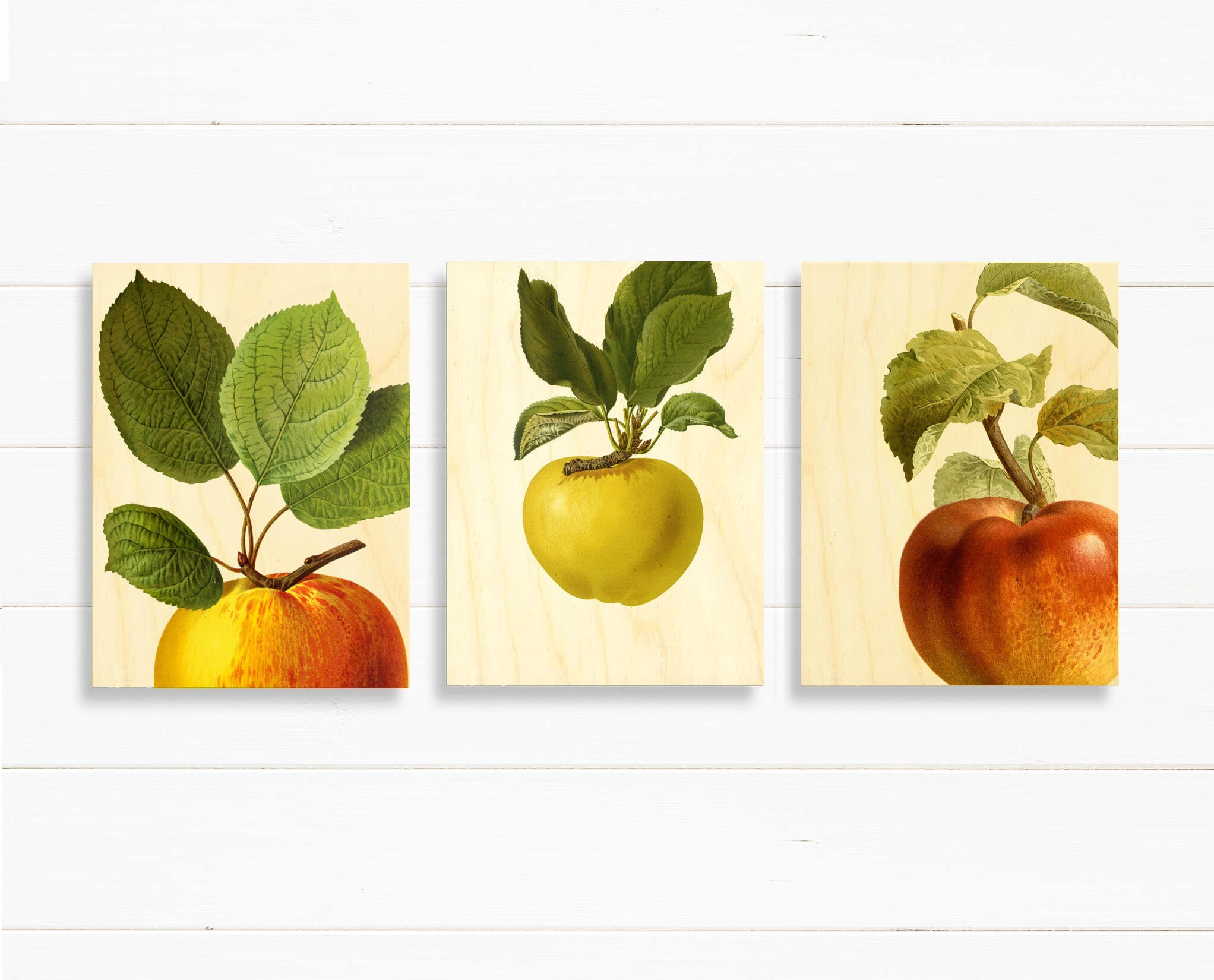 3 wood canvas print set of apple art for mom Kitchen wall art