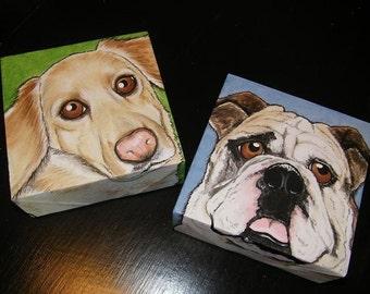 Two Custom Pet Portrait Paintings 6x6 - handpainted