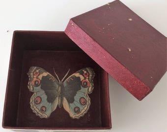 Storage Box - Vintage Butterflies Paper Collage (Burgundy)