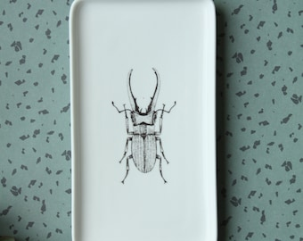Dish | Stag Beetle