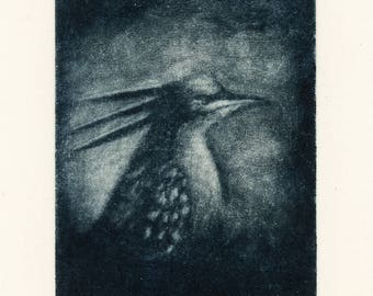 Bird Crest, Mezzotint engraving