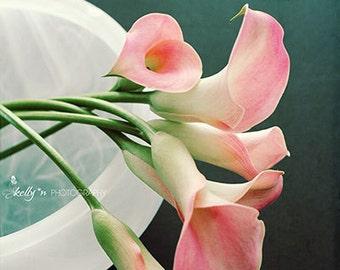 Flower Photography- Pink Cala Lilies Photo, Floral Still Life, Pink White Dark Teal Decor, Floral Wall Art, Modern Home Decor Fine Art Print