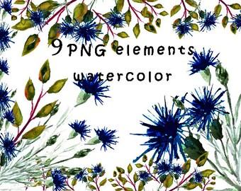 Blue flower clipart / watercolor clipart / cornflower watercolor clipart / watercolor png elements / separate flower clipart / blue clipart