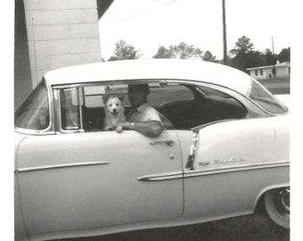 """Vintage Snapshot """"Sunday Drive"""" Smiling Puppy Dog Riding In Car Found Vernacular Photo"""
