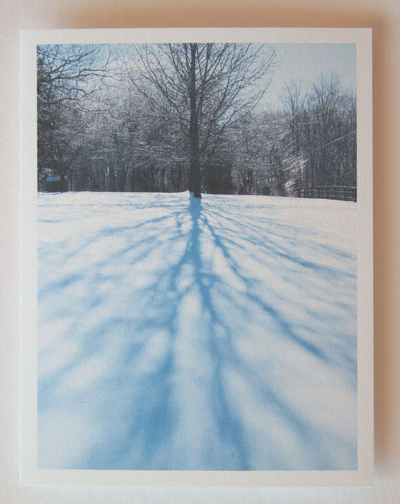 Winter Shadow, note card, blank greeting card, winter wonderland, fine art, single card, photo greeting cards, woodland scene, frost, trees
