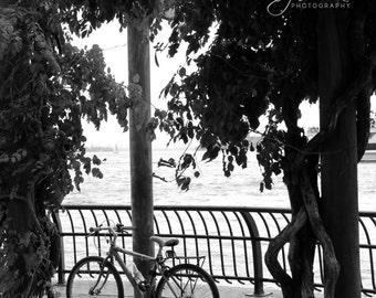 NYC Bike Black and White Photography Print