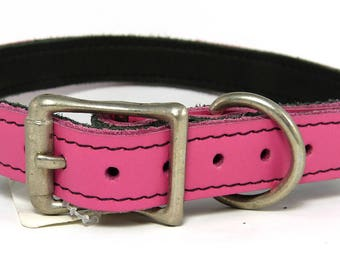 Pink latigo leather buckle collar