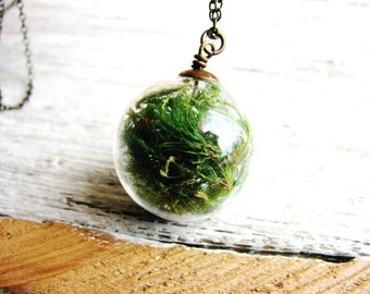 Moss Necklace Glass Orb Specimen Green Terrarium Woodland Nature Minimalist Gardener Naturalist Delicate Real Plant Preserved Under Glass