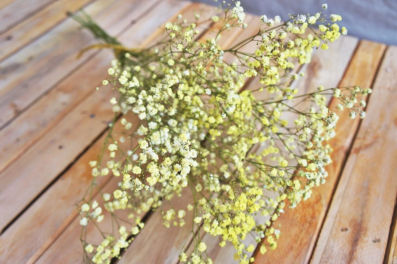 dried yellow baby\'s breath bouquet , Wedding bouquet, dried flower ...