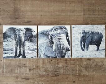 Elephant Wall Art Set of 3 (8 x 8 inch Wood-Cradled Panels) Black and White Art - Animal Nursery Home Decor - Elephant Lover