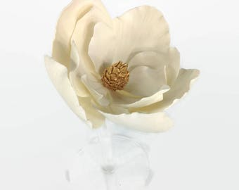 Large Gold and White Magnolia
