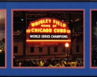 Chicago Cubs World Series Champions Collage