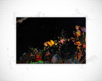 Limited Edition Fine Art Print | Afterglow #16