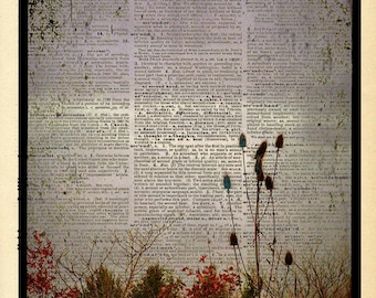 """Nature Photography """"In the Gloaming"""" Fine Art Woodland Fairy Tale Photograph Print - Upcycled Dictionary Print - Vintage Book Art"""