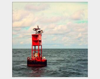 Buoy Photograph, Red Blue Art, Pelicans Photo, Nautical Photo, Coastal Wall Art, Water Photograph, Bird Photo, Mississippi Gulf Coast Photo