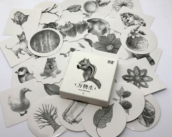 Black & White Natural World Stickers
