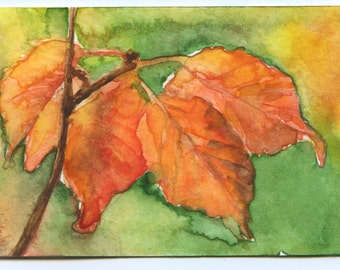 Fall Leaves Watercolor ACEO Giclee Print