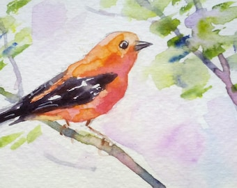 original watercolor painting ACEO scarlet tanager bird,2.5x3.5 inches