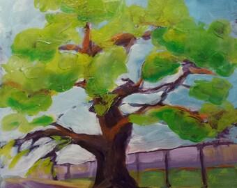 Oak Tree original landscape oil painting