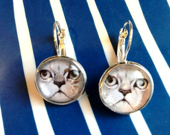 Grumpy Cat cabochon earrings- 16mm