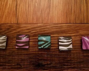 Square Domed Glass Magnet Set of 5 Zebra Print