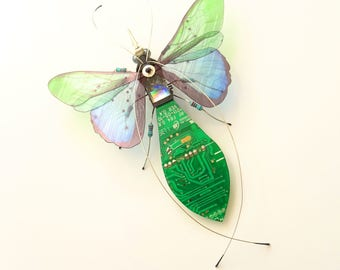 The Beautiful Prism Fly, Circuit Board Insect by Julie Alice Chappell, DewLeaf