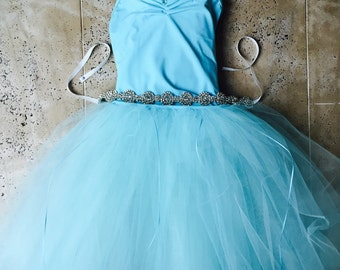 Frozen skirt Tutu Dress long tutu tulle skirt elsa with Satin Ribbon Swarovski Crystal Embellishment Elastic waist