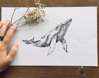 Whale Drawing Original