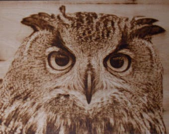 Pyrography, Burned wooden picture: Owl - A3 Plywood