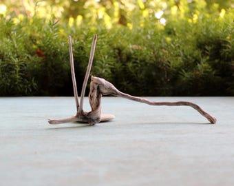 Surf Tumbled Driftwood Sculpture , Natural Art , Beach Decoration , Drift Wood Art , Nature Made Artwork