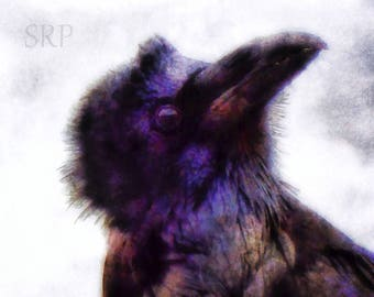 Deep Thoughts - PHOTO PRINT - Raven Abstract
