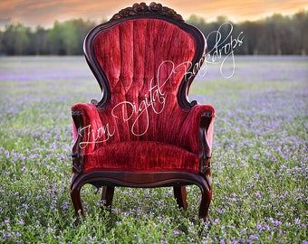 Chair Spring Backdrop