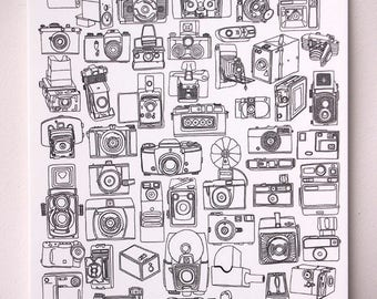 Camera collection Print