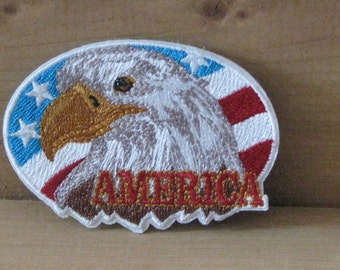 Wholesale bulk lot  6 pcs US America Eagle   embroidered   iron  on patch  DIY  7x5cm