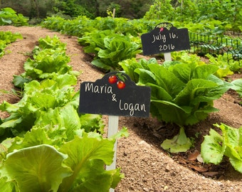Personalized Wedding Gift Vegetable Garden Plant Labels Customized Names Photo Anniversary Valentines Invitation pp76