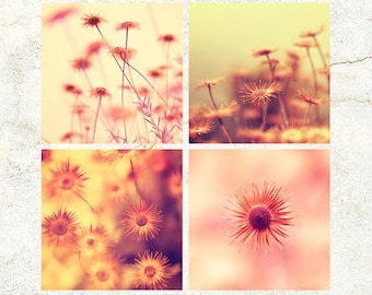 Digital Download AUTUMN Season LOVE seeds and flowers Photo set of four Wall Art Macro Photography scenic orange red Gift house decoration