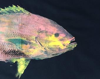 Original Gyotaku Fish Rubbing YellowTail Snapper By Alex Dragoni