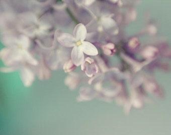 Lilac Print, Flower Photography, Floral Art Print, PurpleTurquoise Decor, Shabby Chic Wall Decor, Flower Wall Art, Nursery Art