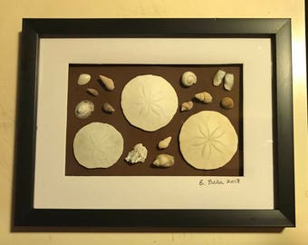 4x6 Framed Sand Dollars