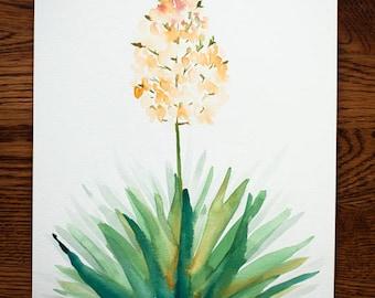 Watercolor Yucca