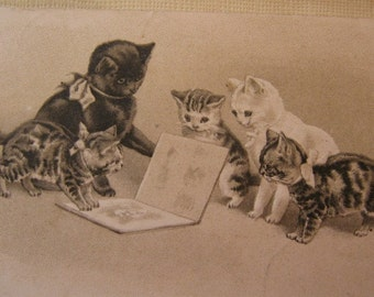 Antique B.W. Embossed Postcard. Mom reads to her kittens from the storybook.1907