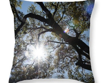 Trees and Sunshine Throw Pillow or Pillow Cover. Oak trees Nature Outdoor Seat Cushion. Nature Home Decor. Sunshine Accent Pillow.