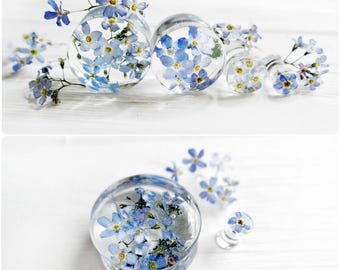 Forget me not blue flower plug earrings resin ear plugs wedding plugs pressed flower wedding gauges ear tunnel terrarium jewelry 6g 4g 2g 0g