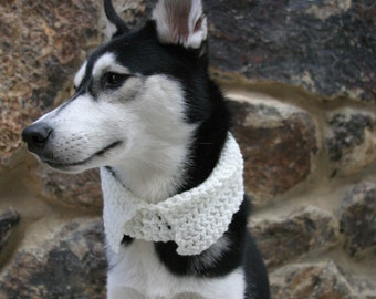 Mr./Mrs. Business Crocheted Dog Collar