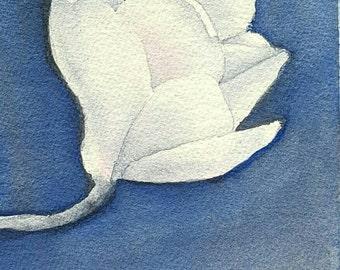 White Magnolia Blank Greeting Card