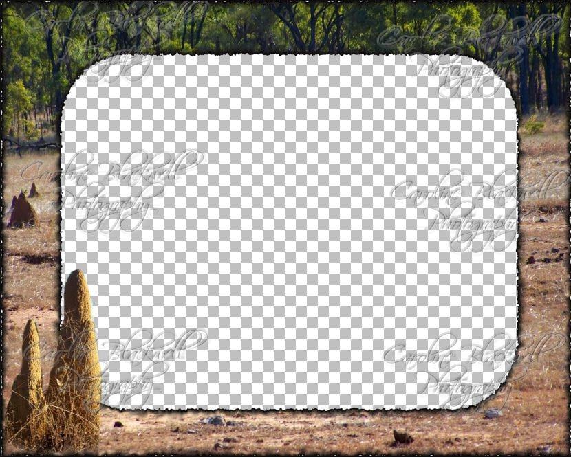 Corel Paintshop Pro Photo frames. Psp.Frame format. Windows ...