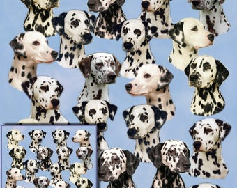 Dalmatian Dog Gift Wrapping Paper with matching Gift Card